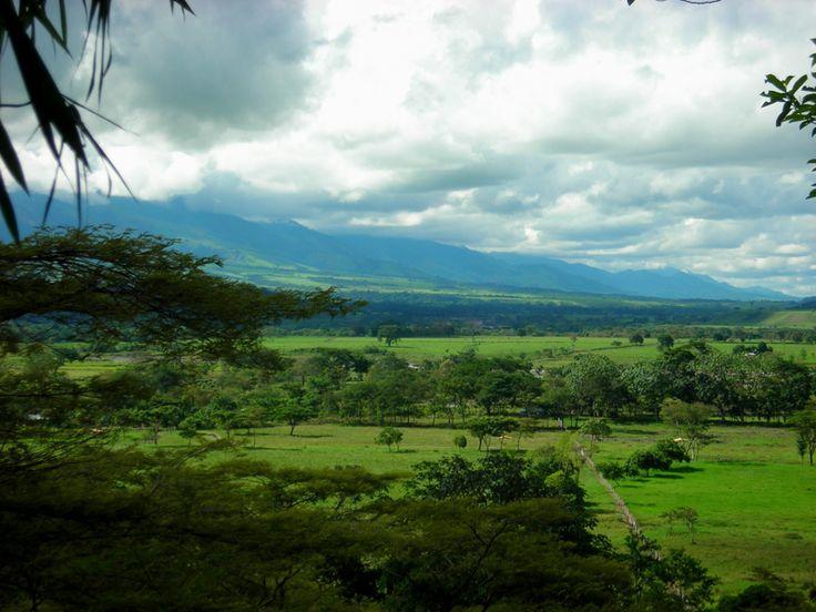 Colombian Llanos plains.