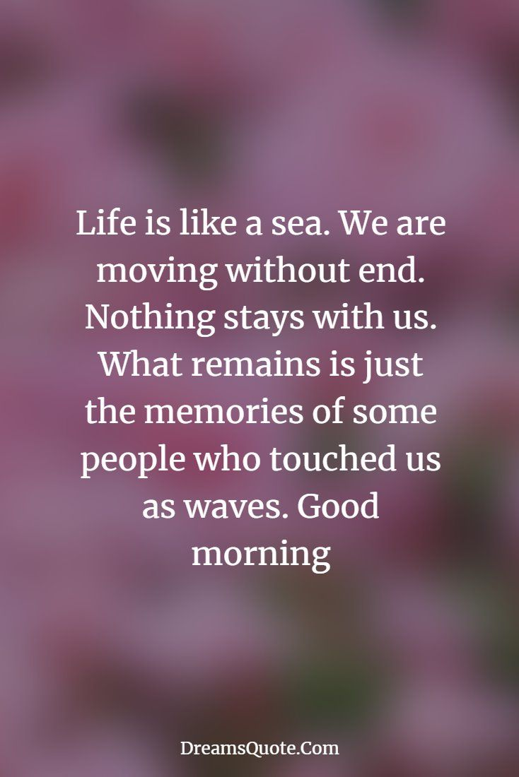 100 Encourage Quotes And Inspirational Words Of Wisdom Encouragement Quotes Inspirational Words Of Wisdom Good Morning Quotes