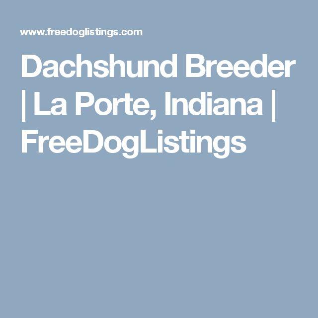 Dachshund Breeder  | La Porte, Indiana | FreeDogListings