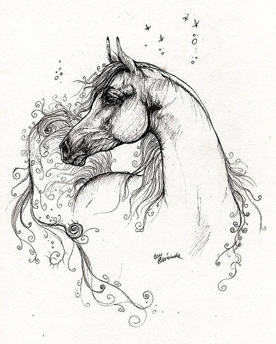 The arabian horse portrait pen drawing