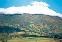 Las faldas del volcán Galeras están intensamente cultivadas hasta el límite de los páramos, lo que genera un mosaico heterogéneo de diversos tipos de cultivos, plantaciones forestales y en forma cada vez más reducida, bosques naturales que se conservan en