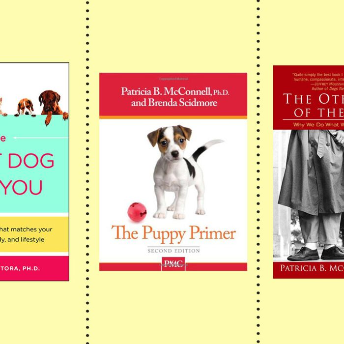 The Best Books For New Dog Owners Good Books Dog Books Books