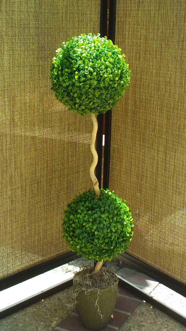 Decorative Boxwood Balls 41 Best Artificial Boxwood Balls Images On Pinterest  Balls