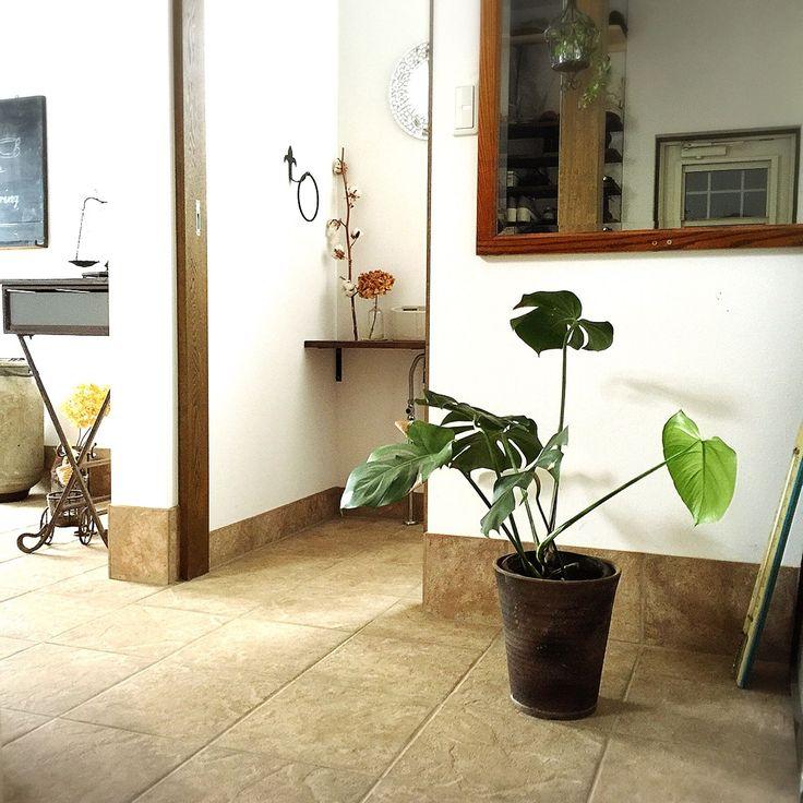 玄関ホールインテリアのインテリア実例 | RoomClip (ルームクリップ) Bathroom/鏡/モンステラ/玄関ホール/トイレのインテリア/グリーンのある