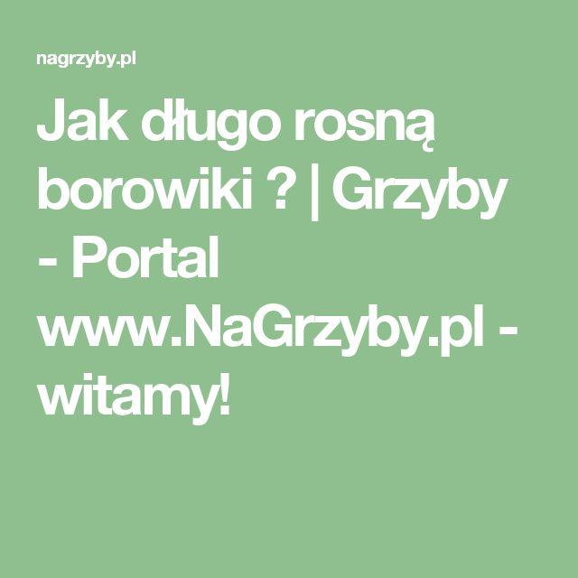 Jak długo rosną borowiki ?   Grzyby - Portal www.NaGrzyby.pl - witamy!