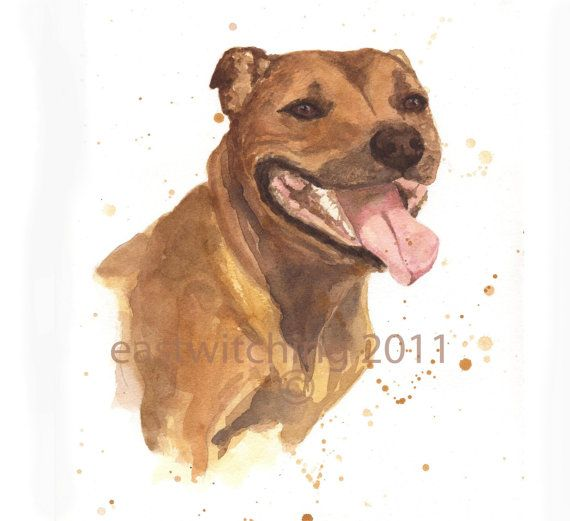WATERCOLOR STAFFORDSHIRE DOG Print, Staffy, dog lover gift, 8x10 print, dog…