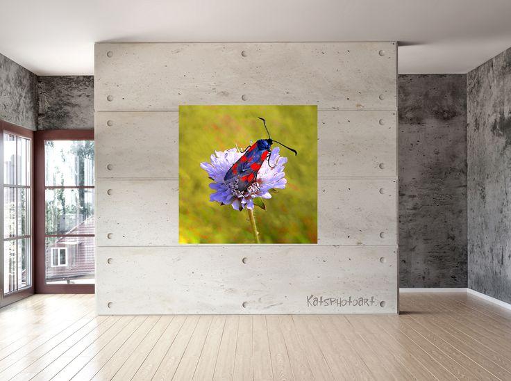 "Kats Original ""Butterfly"" Certified Fine Art PhotoRag print"". 100x 100 cm Diasec 2 mm mat acrylaat / 4 mm Alu-Dibond."
