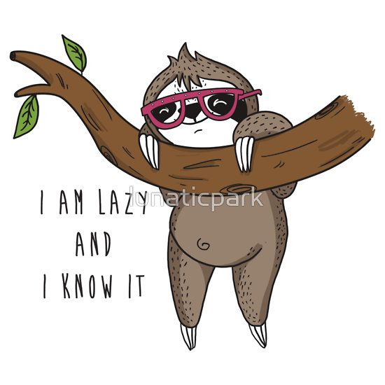 I am lazy and I know it