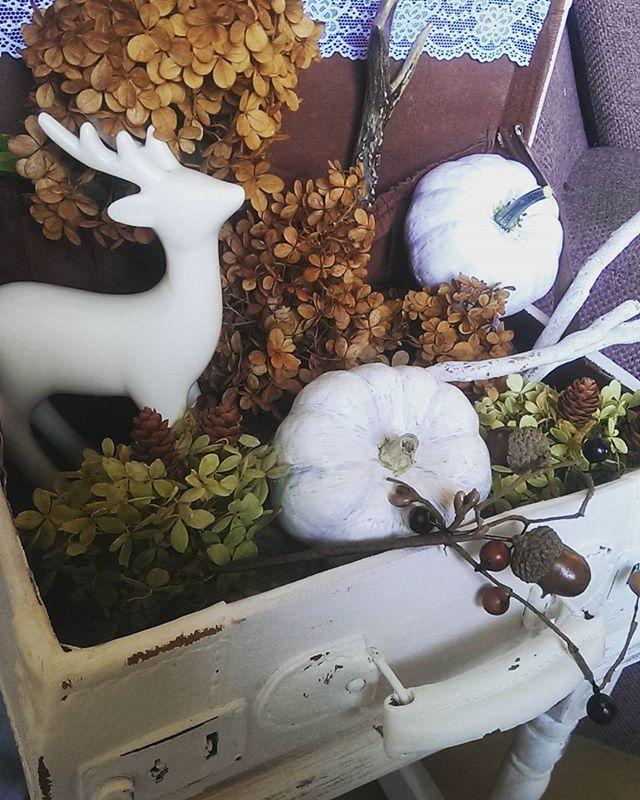 #herbstdeko #herbst #autumn #shabbyhome #shabby #pumpkin #kürbis #koffer #case #deer #hortensien #vintage #decoration #deco #myhome #home