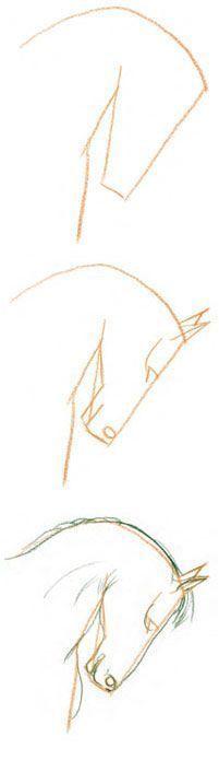 Dibuja un caballo en 3 pasos