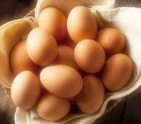 Эликсир молодости: Яйца vs сухие волосы