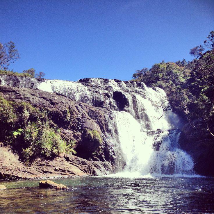 37 Best Udawalawe National Park Sri Lanka Images On Pinterest National Parks State Parks And