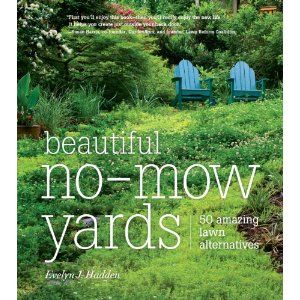 low maintenance: Books Covers, No Mow Yard, Lawn Alternative, Front Yard, Nomow Yard, Amazing Lawn, Beautiful No Mow, 50 Amazing, Yard Ideas
