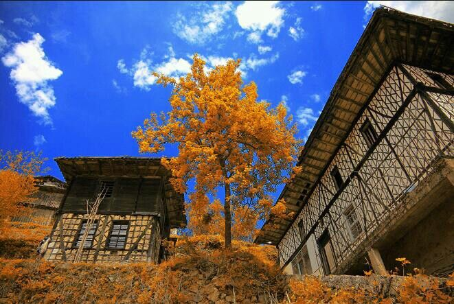 Autumn - Village house