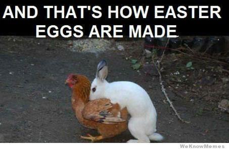 >^..^< ❀ ӇᎧᖘᖘƴ ؏ᎯᎦƬ؏Ʀ ❀ >^..^<  ~ Easter Meme 02