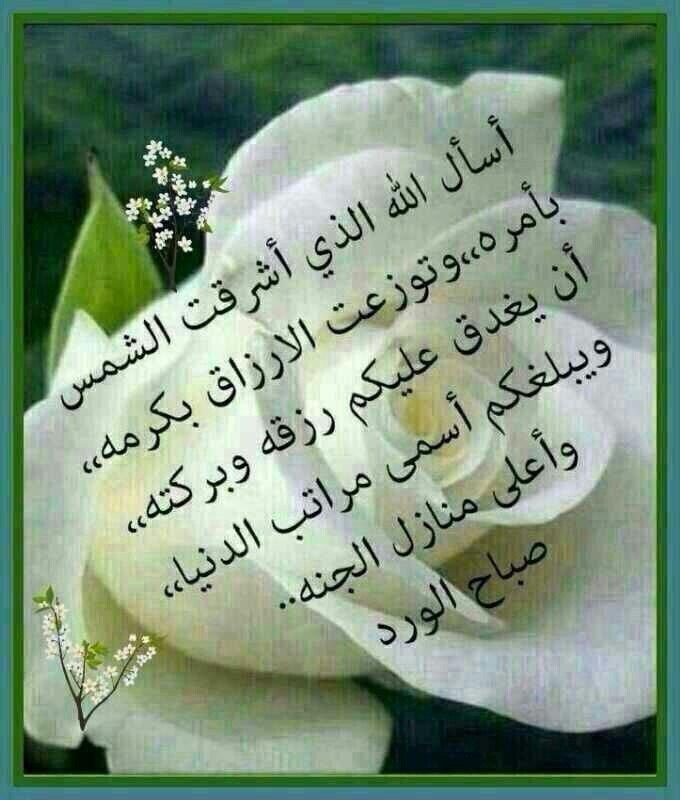 Good Morning Quotes Allah : Good morning quotes in arabic quotesgram
