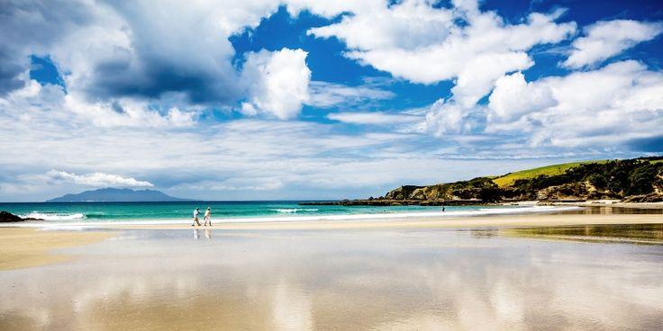 East coast beaches | AucklandNZ.com