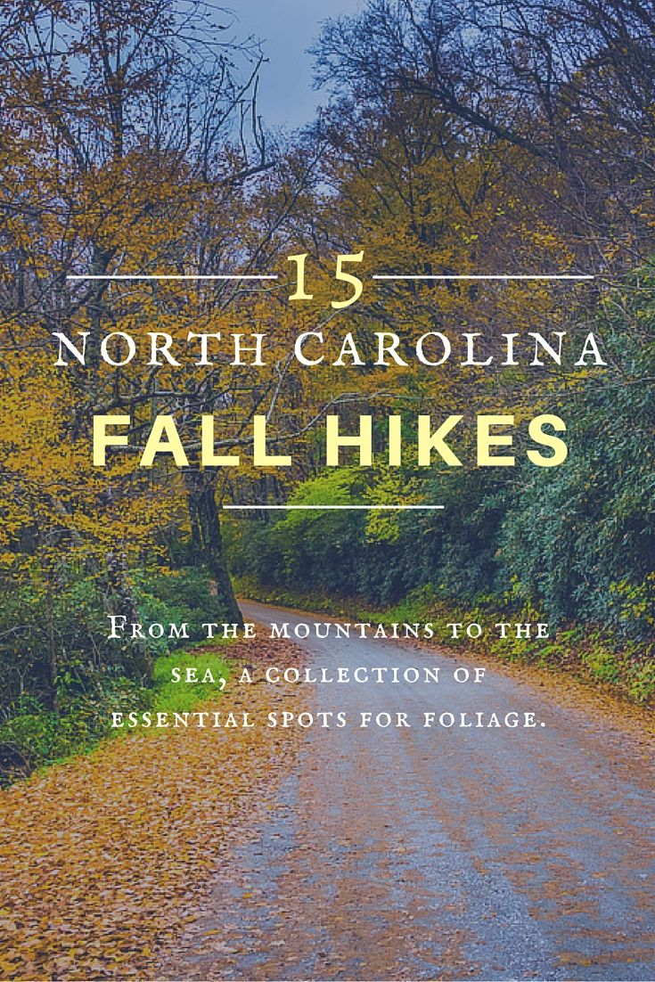 It's #fall, y'all! Get your hikes in with great views, from the mountains to the coast.