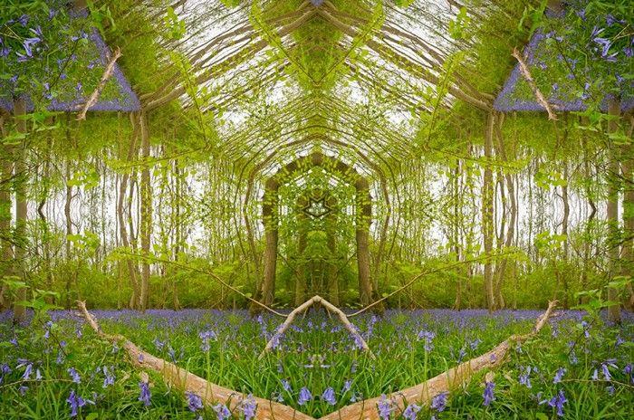 """Трудно поверить, что эти удивительные """"порталы"""" в иные миры созданы из обычных пейзажей, талантливо переосмысленных Мэттом Уолфорд."""