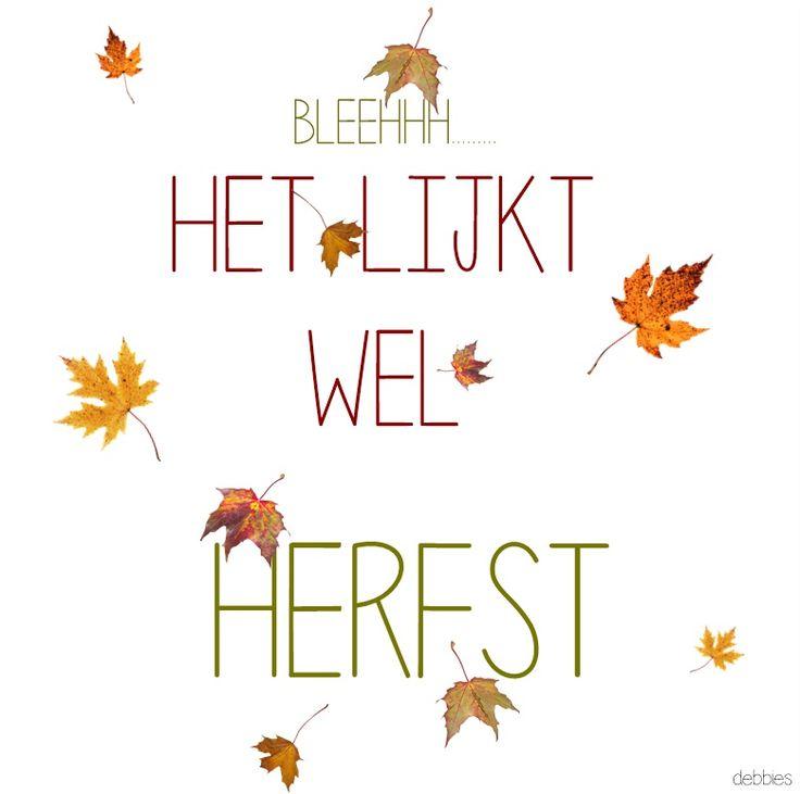 ♥ het lijkt wel herfst