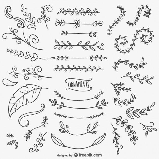 ornamento - hojas - líneas