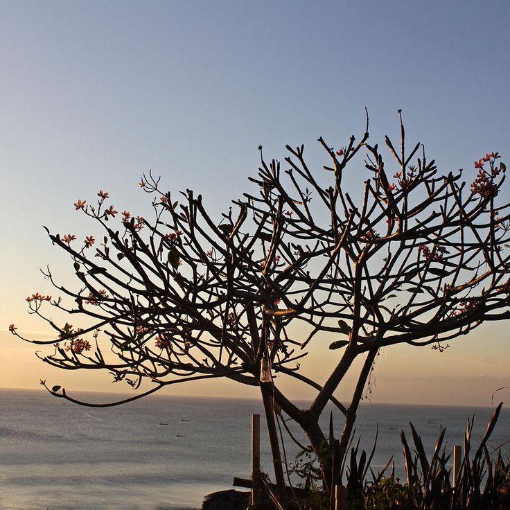 Bali sunset ocean views. Bingin Beach, Bali, Indonesia.