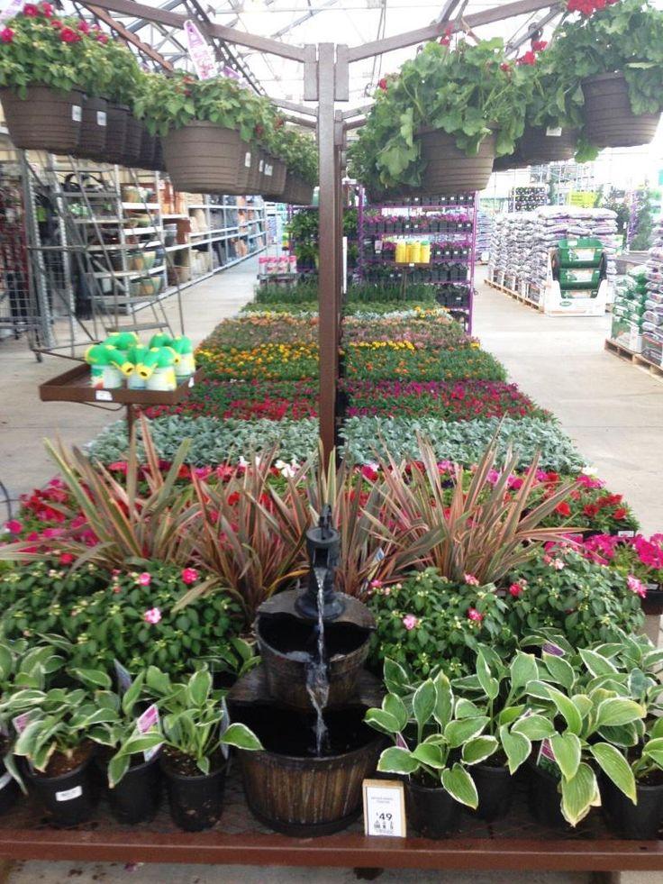 Seville farms on garden center displays planting and - Garden center sevilla ...