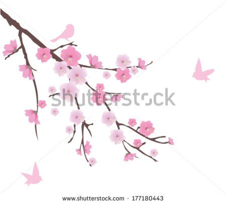 Blossoming Cherry With Golden Heart Stock Vector 69079207 : Shutterstock