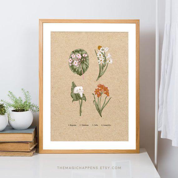 Printable Botanical Wall Art Vintage Floral Print Printable