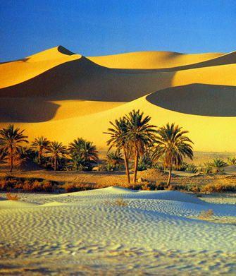 "Sahara Sand Dunes and Oasis   Reprinted from ""L'ALGERIE AUJOURD'HUI"" (Les editions jeune afrique)"