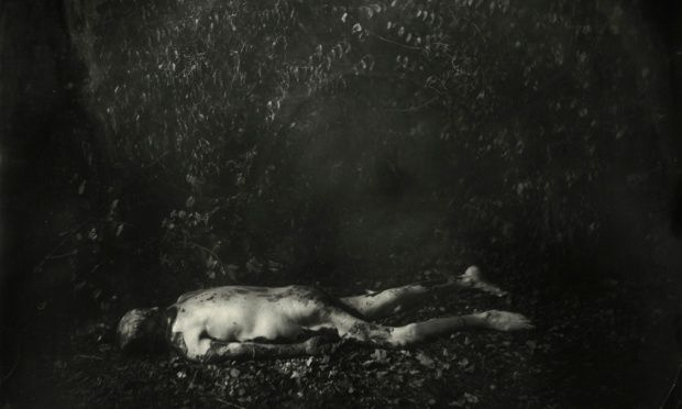 The Body Farm in Tennessee ... a detail from Sally Mann's Untitled 61