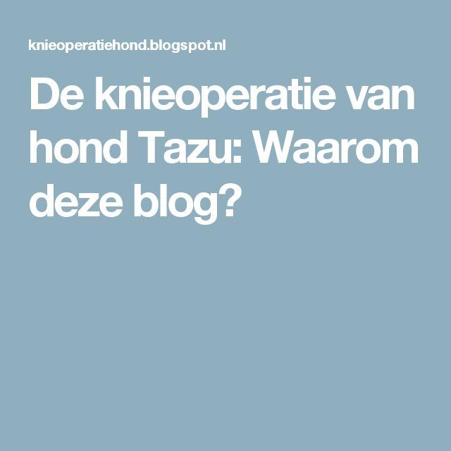 De knieoperatie van hond Tazu: Waarom deze blog?