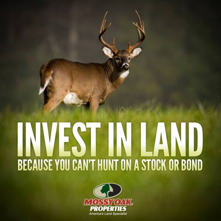 quotes on investing in land