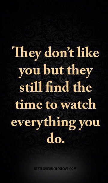 They don't like you but they still find the time to watch everything you do.