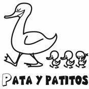 Un pollito llamado Llito. Cuentos infantiles para tu hijo pequeño. Cuentos infantiles, populares y tradicionales para los niños. Nuevos cuentos infantiles de nuestros lectores. Publica tu cuento infantil en Internet.