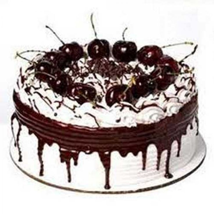online cake home delivery midnight cake delivery