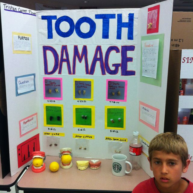 37 Best Images About Science Project On Pinterest