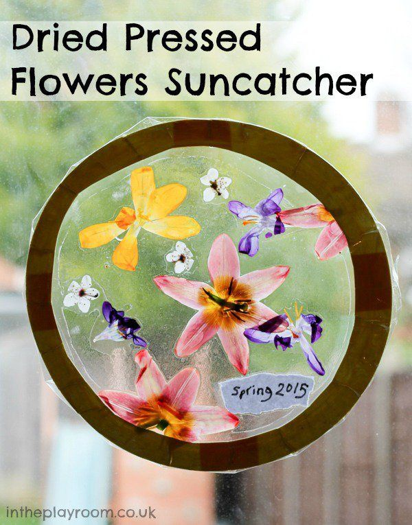 Dried Pressed Flowers Suncatcher Craft - In The Playroom