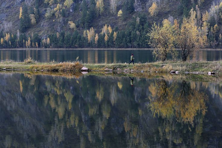 Yenisei river in the Taiga