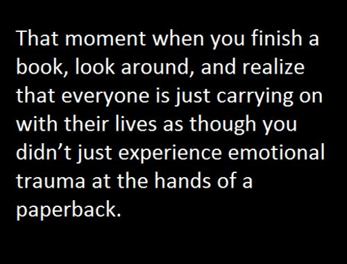 Thank you Cassandra Clare....you emotionally torture me with every book.