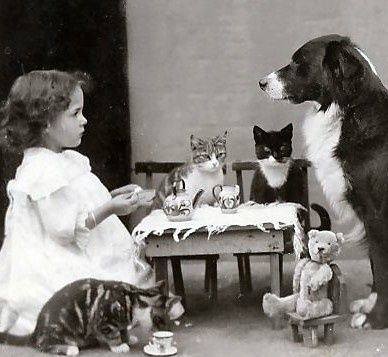 The tea party, 1910's