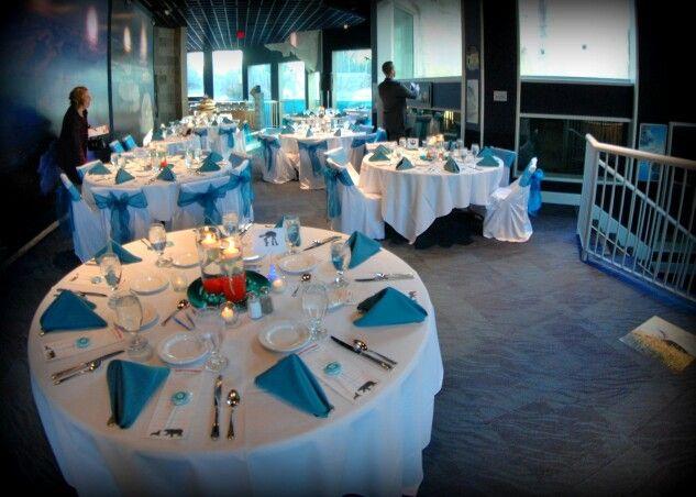 Arctic Encounter Wedding Reception