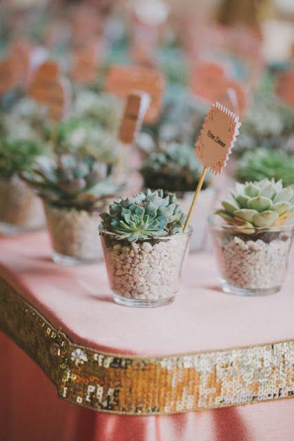 wesele w stylu rustykalnym, ślub w stylu rustykalnym, podziękowania dla gości weselnych, prezenty dla gości weselnych, sukulenty, kaktusy