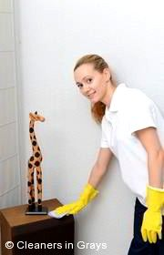Domestic Cleaners Grays