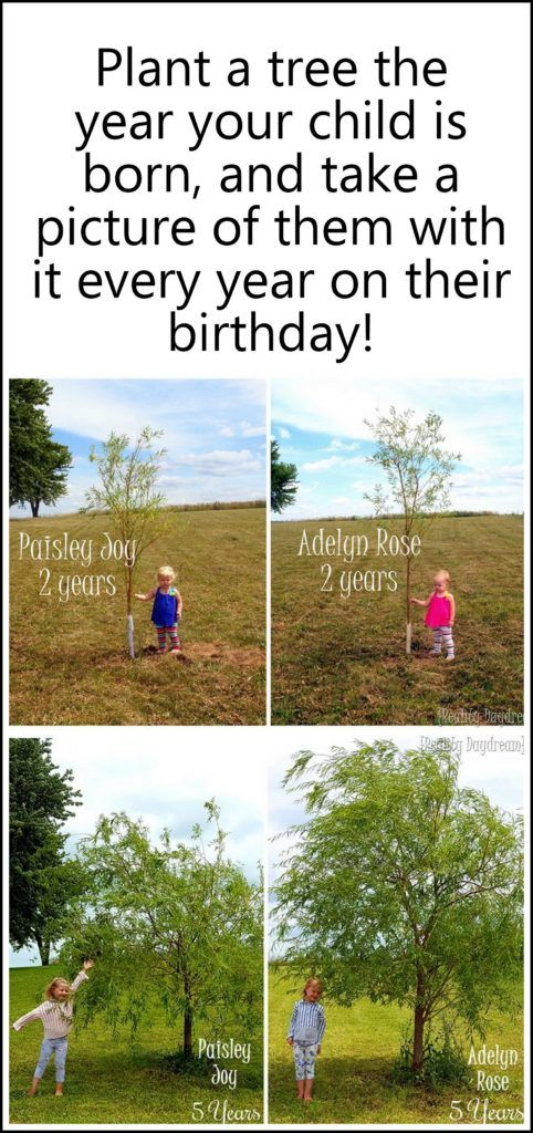 On the year your baby is born, plant a tree for them, and take their pic with it every year on their birthday! SO FUN to watch how they both grow over the years! {Reality Daydream}