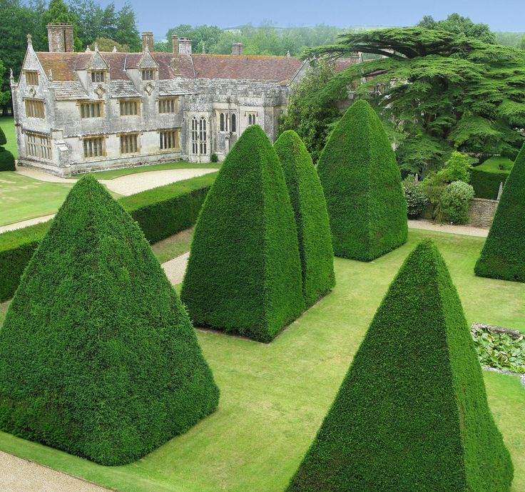 Athelhampton Gardens, Topiary 3 | Credit Athelhampton Estate… | Flickr - Photo Sharing!