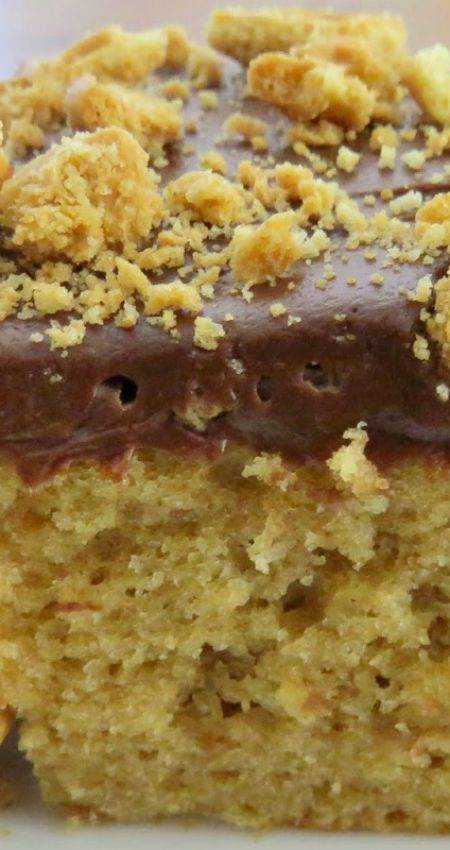 Peanut Butter Bomb Cake Recipe ~ Chocolate and peanut butter are matches made in heaven... A family favorite and super easy to make.
