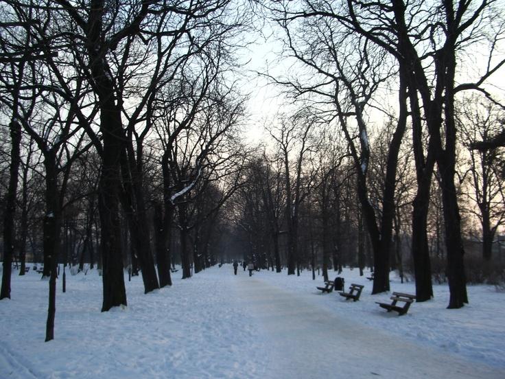 Winter in Wrocław