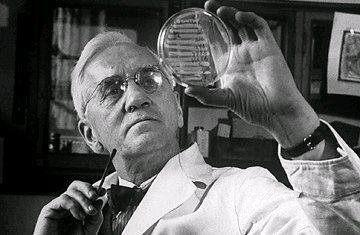 La penicillina fu scoperta da A. Fleming a Londra nel 1929, grazie all'osservazione casuale della muffa e della reazione dei batteri ad essa.