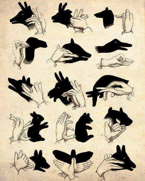 How to make shadows in the shape of animals using your hands.